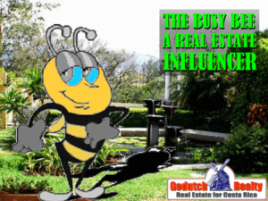 Cariari real estate and the busy bee