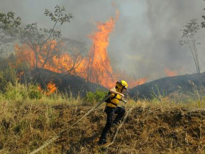 The firefighters at work in Atenas