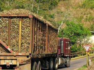 Trucks in Costa Rica on narrow roads