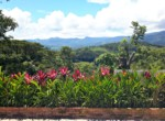 Almost-6-Acres-of-Lush-Landscaping-Magnificent-Views-with-2-Homes-in-Atenas-more-views.jpg