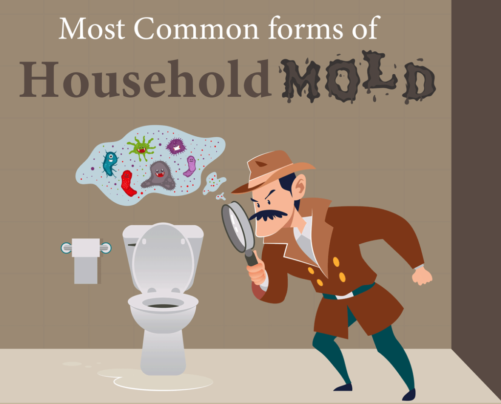 Most Common Forms of Household Mold - Cover