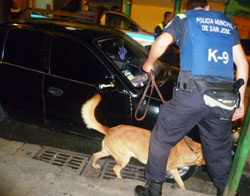 The San Jose municipal police has a K9 unit