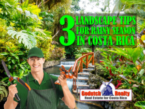 3 Landscape Management Tips For The Rainy Season