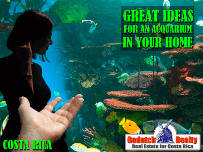 Clever Ways To Decorate Your Home With An Aquarium